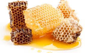 mire használhatjuk a méhpempőt?